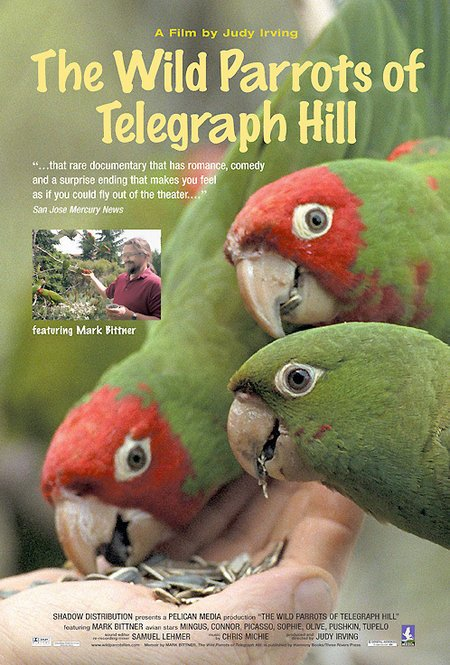 The Wild Parrots of Telegraph Hill Poster